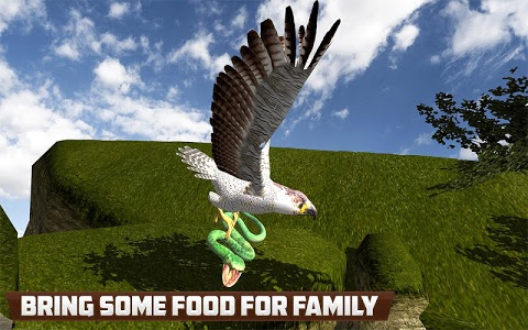 screenshot of American Falcon Wild Sim 2016 version 1.9