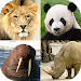 Download Animals Quiz - Learn All Mammals, Birds and more! 1.5 APK