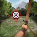 Download Archery Big Match 1.2.4 APK