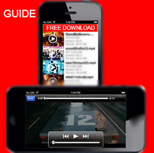 screenshot of Flash Player for Android Guide version 1.0