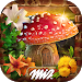 Hidden Objects Fantasy Games Puzzle Adventure