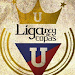 Download Liga Rey de Copas 1.0 APK