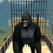 Download Real Gorilla Simulator 1.9 APK