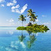 Download Tropical Beach Live Wallpapers 1.7 APK