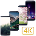 Download Wallzy - HD Wallpapers Backgrounds for Pexels 1.5.8 APK